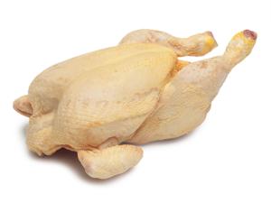 Carnes de Pollo